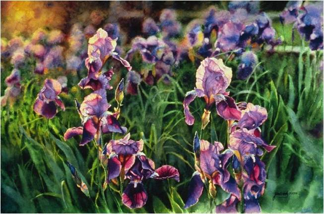 Evening Hues - Fine art floral watercolor painting by Jim Grady