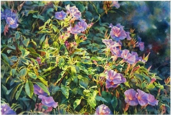 Morning Hues - fine art floral watercolor painting of morning glories by Jim Grady