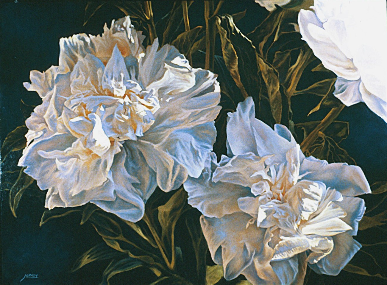 Floral Paintings - Jim Grady Art